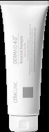 Шампунь для волос РАСТИТЕЛЬНЫЙ EVAS Dermaid 4.0 Botanical Shampoo 100 мл: фото